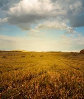 landscape-2144650_1280